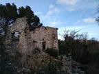 https://photos.revestou.fr/i?/upload/2020/02/11/20200211002303-24db39b1-th.jpg