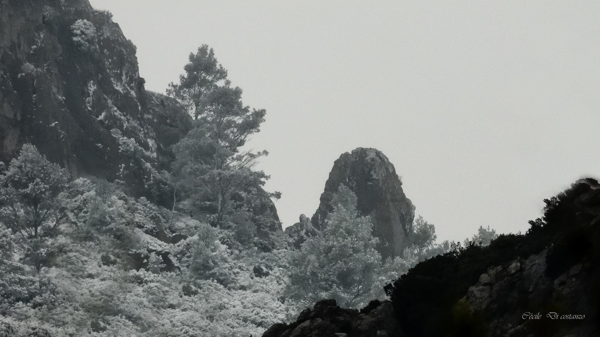 Neige sur le Mont Caume le 25 mars 2020